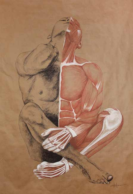 MarcyVillafana_Muscle-Man, anatomy drawing, male nude